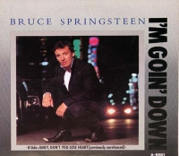 Bruce Springsteen: I'm goin' down